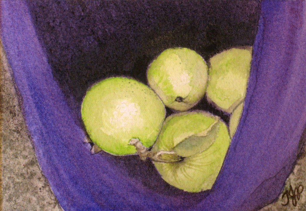 Green Apples In A Purple Sweater 1